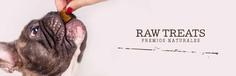 Banner Raw Treats